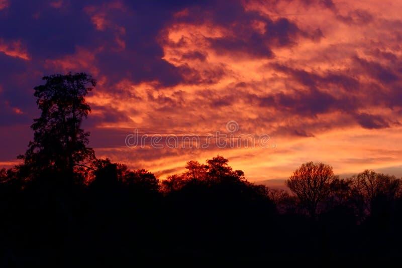 Download Cielo a fuoco fotografia stock. Immagine di ablaze, yellow - 3875424