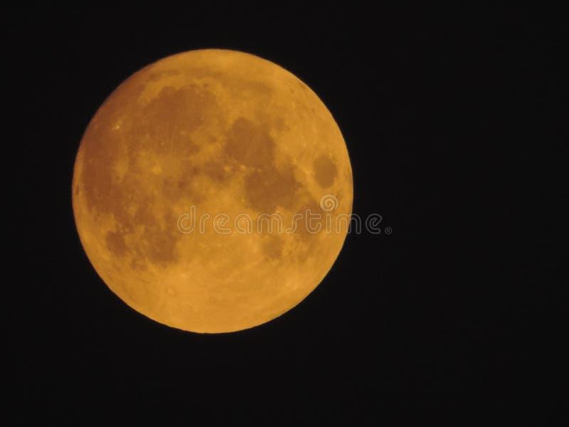 Cielo hermoso de la noche de la luna del queso fotografía de archivo libre de regalías
