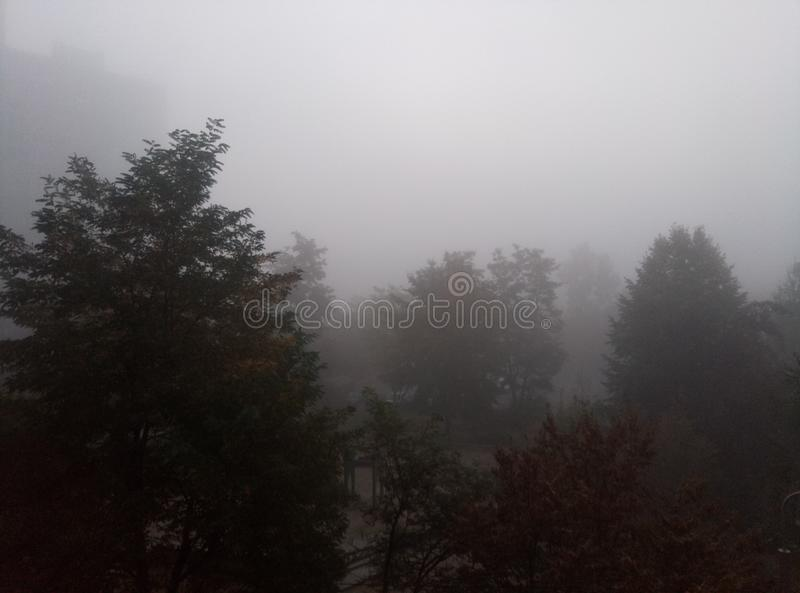 Cielo nebbioso prima della pioggia immagine stock libera da diritti