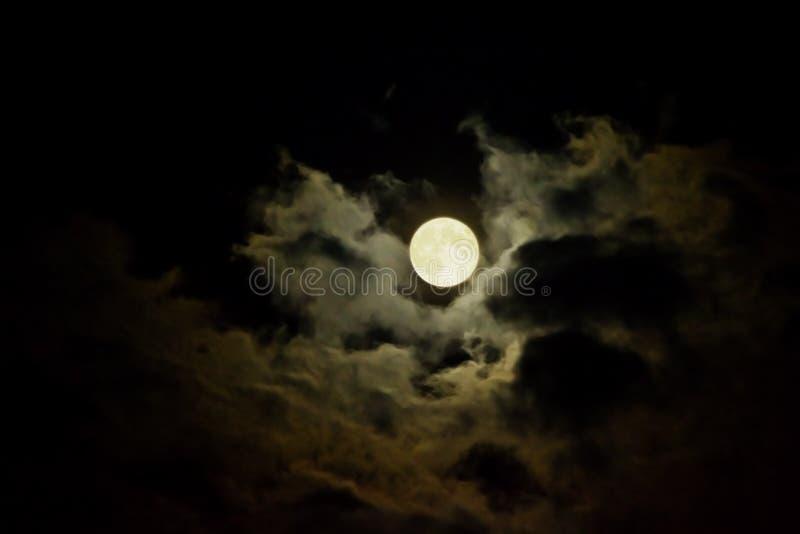 Cielo Nocturno Foto De Archivo Gratis