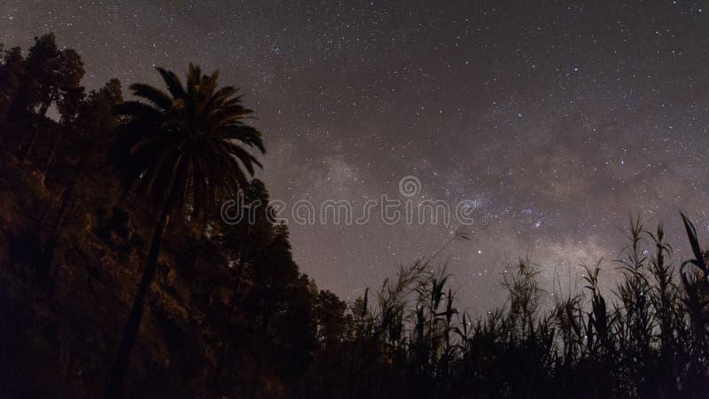 Cielo nocturno amarillo estrellado foto de archivo