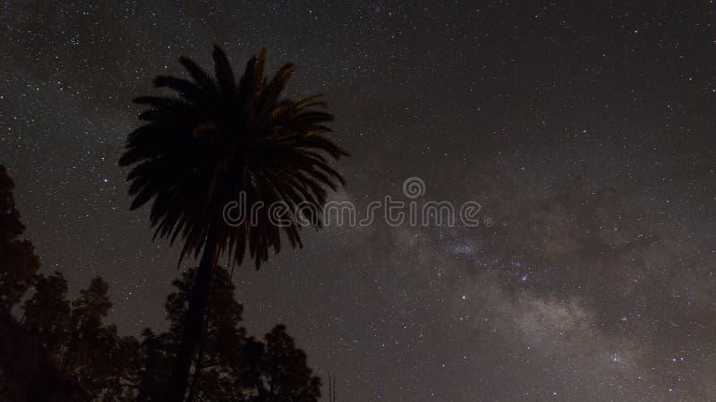 Cielo nocturno amarillo estrellado imagenes de archivo