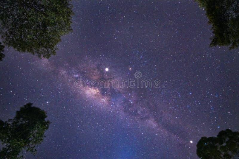 Cielo nocturno brillante con las estrellas dispersadas claras imágenes de archivo libres de regalías