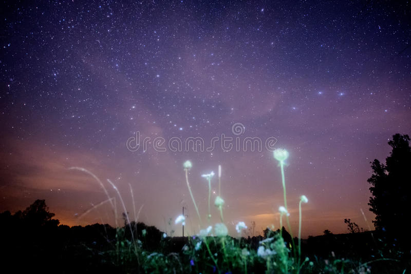Cielo nocturno con la vía láctea fotografía de archivo libre de regalías