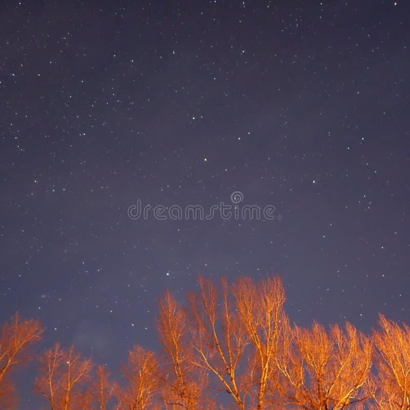 Cielo nocturno del yute fotografía de archivo