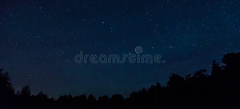 Cielo nocturno estrellado con una estrella fugaz y un treeline en el primero plano fotos de archivo