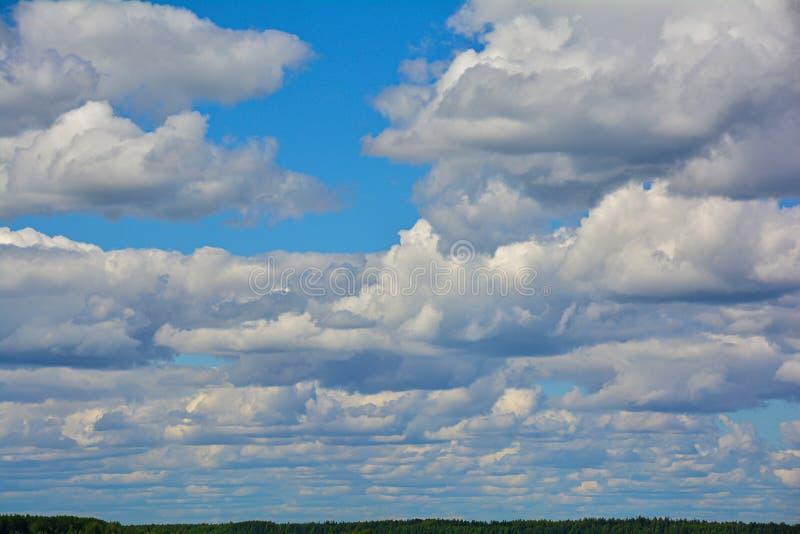 Cielo nublado con una tira de bosque abajo Fondo abstracto natural foto de archivo libre de regalías