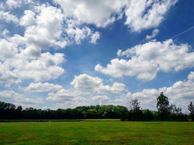 Cielo nublado hermoso en un parque en Bélgica imagen de archivo