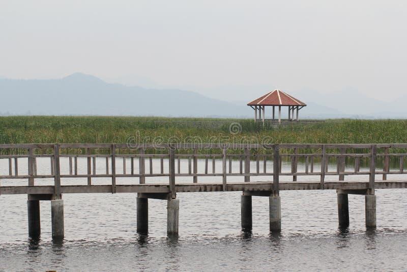 Cielo nublado, refugio y puente de madera en el pequeño lago entre fondos verdes de la hierba de la naturaleza adentro temprano d imagen de archivo
