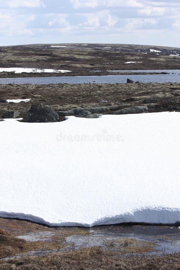 Cielo nublado sobre la inundación en la tundra de la primavera fotos de archivo