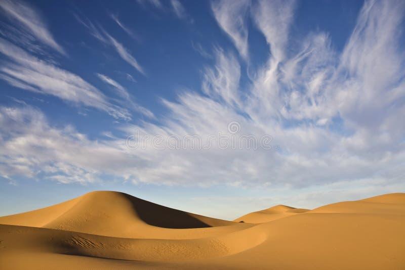 Cielo nuvoloso del deserto con le dune di sabbia immagine stock libera da diritti