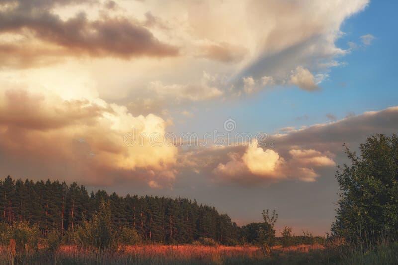 Cielo nuvoloso di estate di sera sopra la valle della foresta dei posti riservati della Russia Paesaggio al tramonto, al campo ed fotografie stock libere da diritti