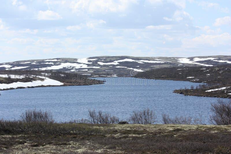 Cielo nuvoloso sopra la tundra dell'inondazione in primavera fotografia stock libera da diritti