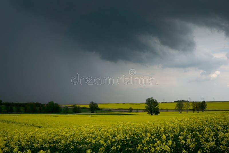 Cielo oscuro antes de llover en primavera fotos de archivo libres de regalías