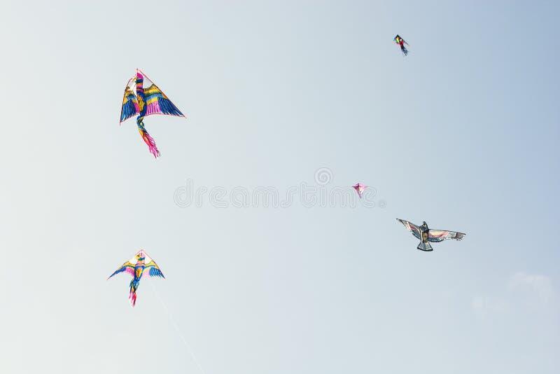 Cielo in pieno degli aquiloni variopinti di volo immagini stock libere da diritti