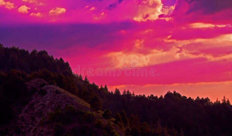 Cielo pittoresco di tramonto e foto delle nuvole all'abetaia sul pendio di collina fotografie stock libere da diritti