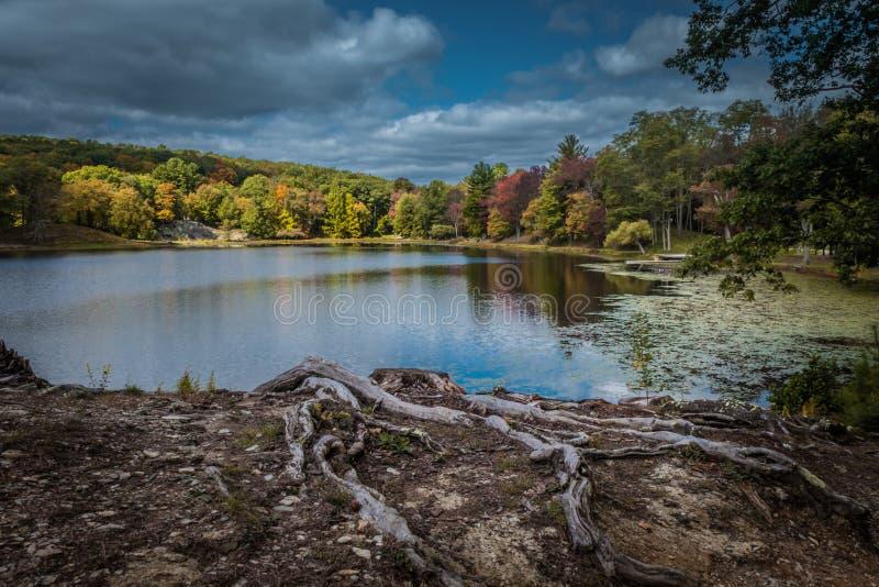 Cielo quebradizo dramático del otoño sobre el lago Tyrrel en el jardín de Innisfree, Millbrook, Nueva York imagen de archivo libre de regalías