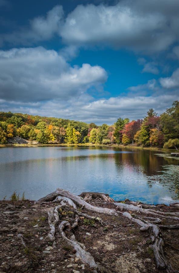Cielo quebradizo dramático del otoño sobre el lago Tyrrel en el jardín de Innisfree, Millbrook, Nueva York foto de archivo