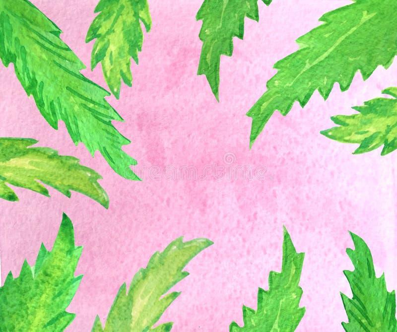 Cielo rosa e foglie di palma verdi illustrazione vettoriale