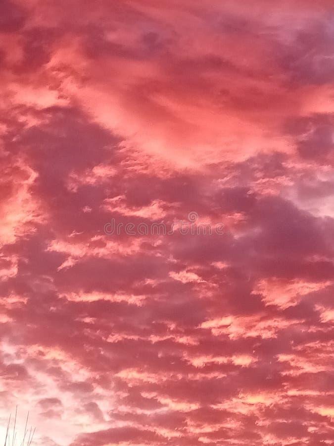 Cielo rosa estetico fotografia stock libera da diritti