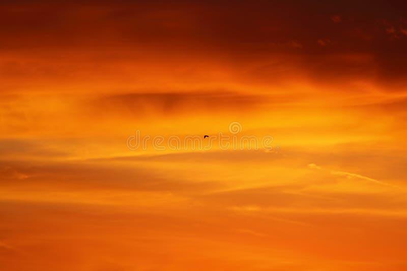 Cielo rosso ed arancio drammatico e fondo astratto delle nuvole nuvole Rosso-arancio sul cielo di tramonto Fondo caldo del tempo  fotografia stock libera da diritti