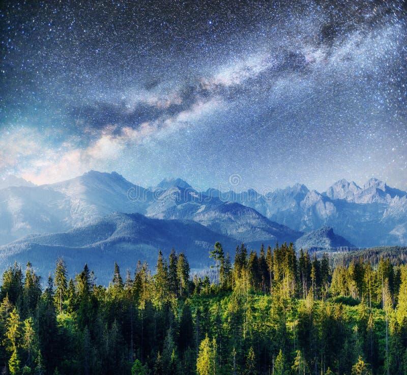 Cielo stellato e Via Lattea sopra le montagne Carpathians l'ucraina fotografie stock libere da diritti