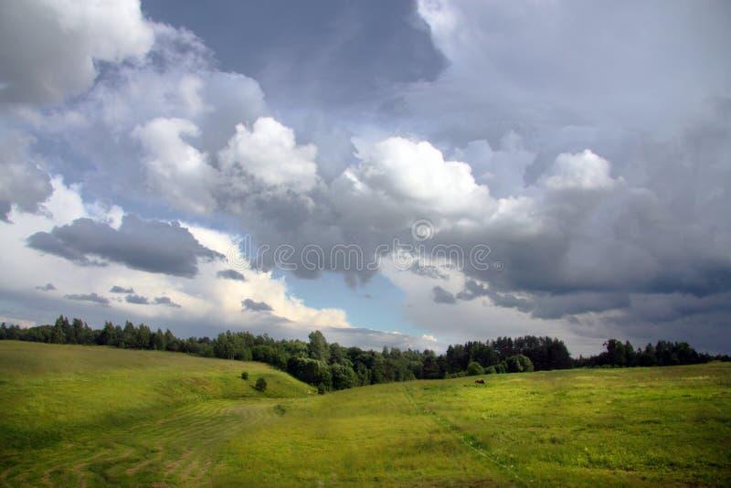 Cielo tempestoso sopra un campo soleggiato fotografia stock libera da diritti