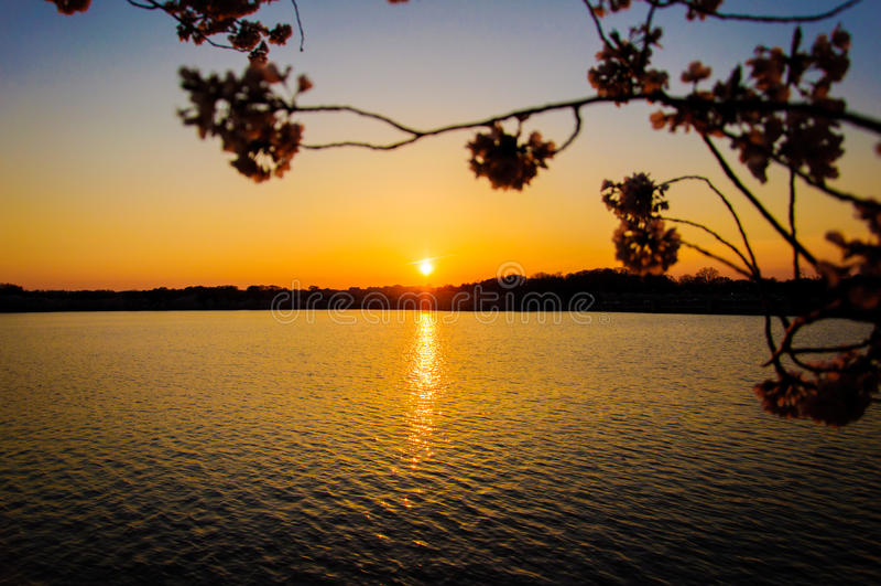 Cielo U.S.A. del sole del Washington DC immagini stock libere da diritti
