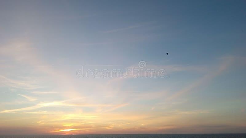 cielo & uccello & nuvole & mare fotografia stock libera da diritti