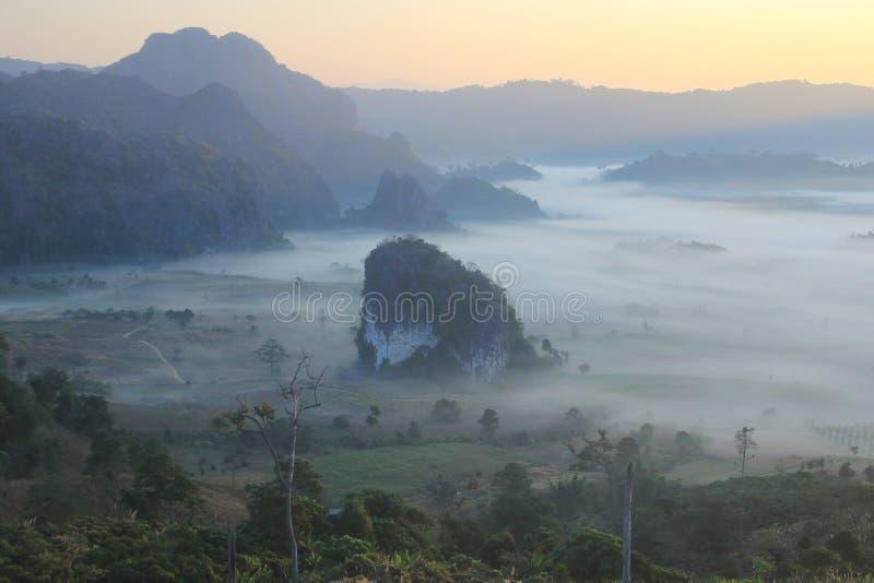 Cielo y niebla de la mañana foto de archivo libre de regalías