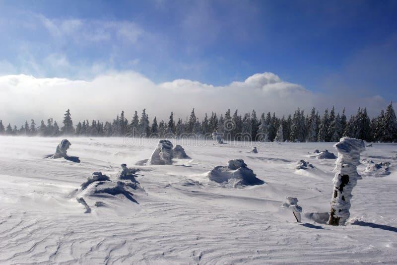Cielo y nieve foto de archivo libre de regalías