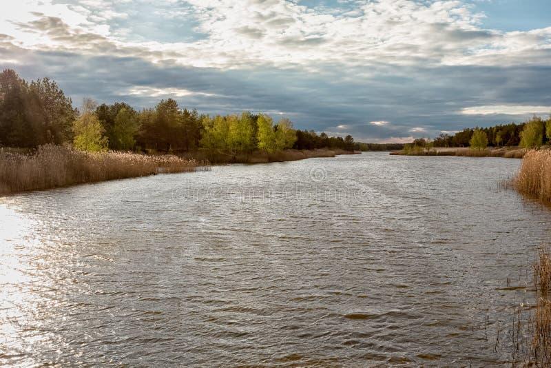 Cielos azules hermosos en un día de primavera a lo largo del río de Illinois imágenes de archivo libres de regalías