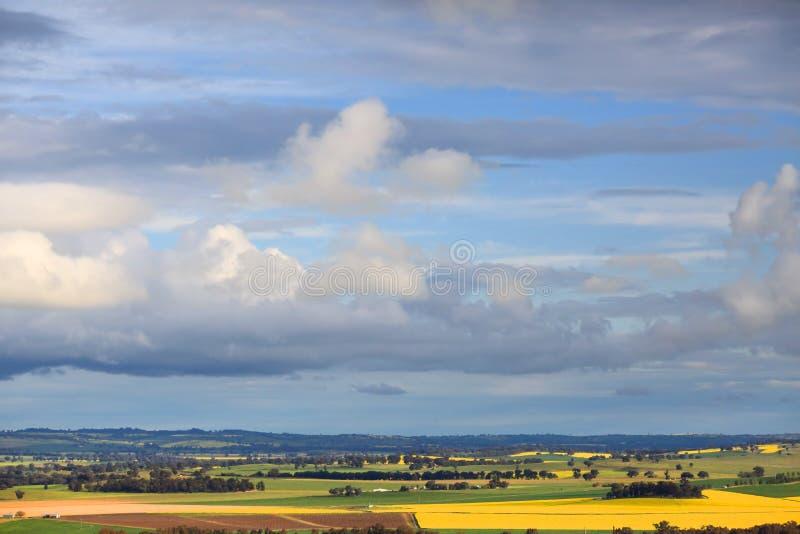 Cielos de la primavera sobre granjas y cosechas rurales foto de archivo libre de regalías