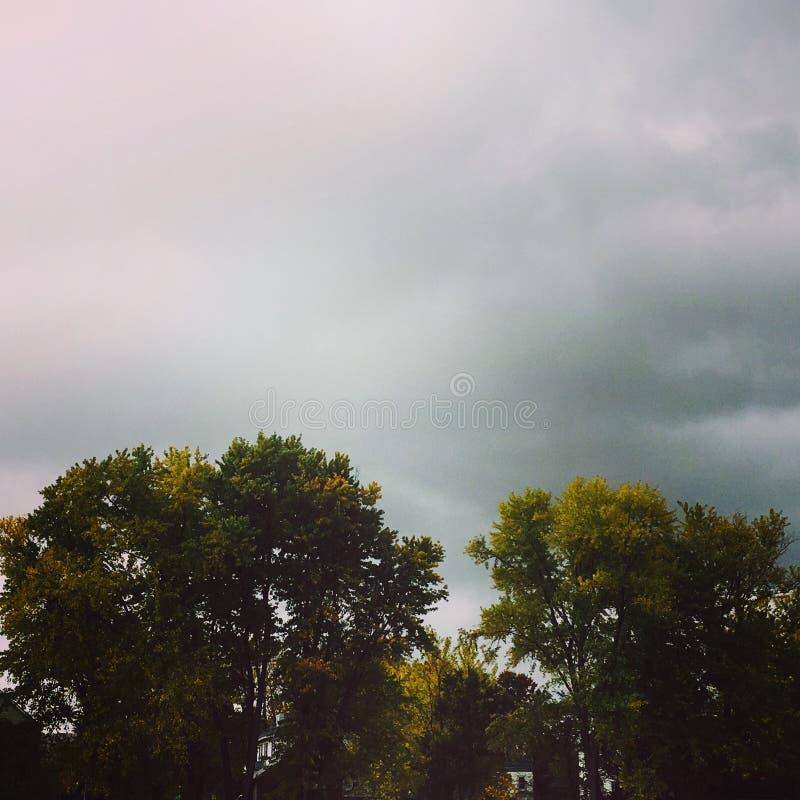 Cielos grises rosados foto de archivo libre de regalías