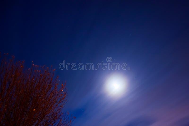 Cielos nocturnos y luna imagen de archivo