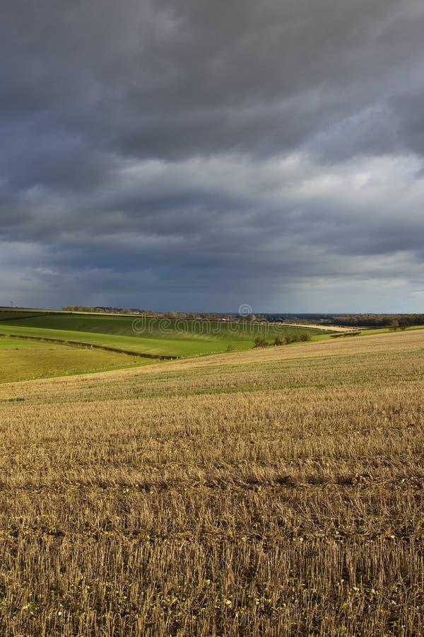 Cielos tempestuosos del invierno sobre campos y prados de rastrojo imagenes de archivo