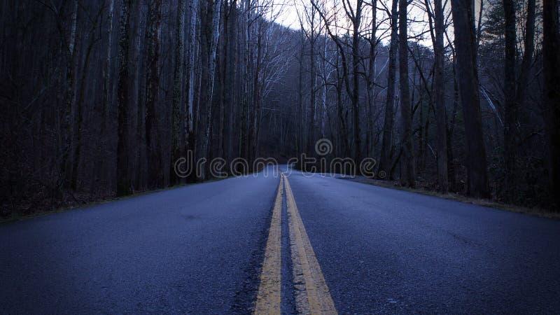 Ciemna i Przygnębiająca Uliczna fotografia droga w Pustym lesie obrazy royalty free