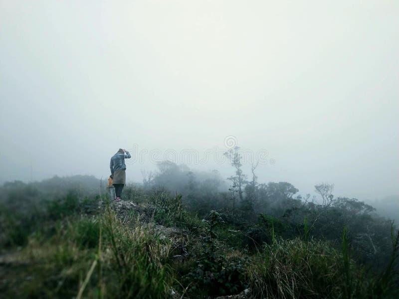 Ciemna mgiełka w lasowej mgle w górach daleko od i samotnej sylwetce obrazy royalty free