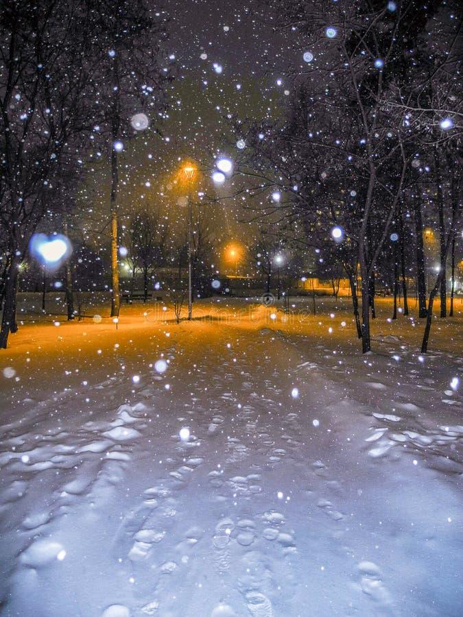 ciemna mroźna noc parka zima Opad śniegu i pomarańczowego światła lampiony obrazy royalty free