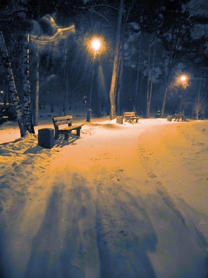 ciemna mroźna noc parka zima Opad śniegu i pomarańczowego światła lampiony zdjęcia royalty free