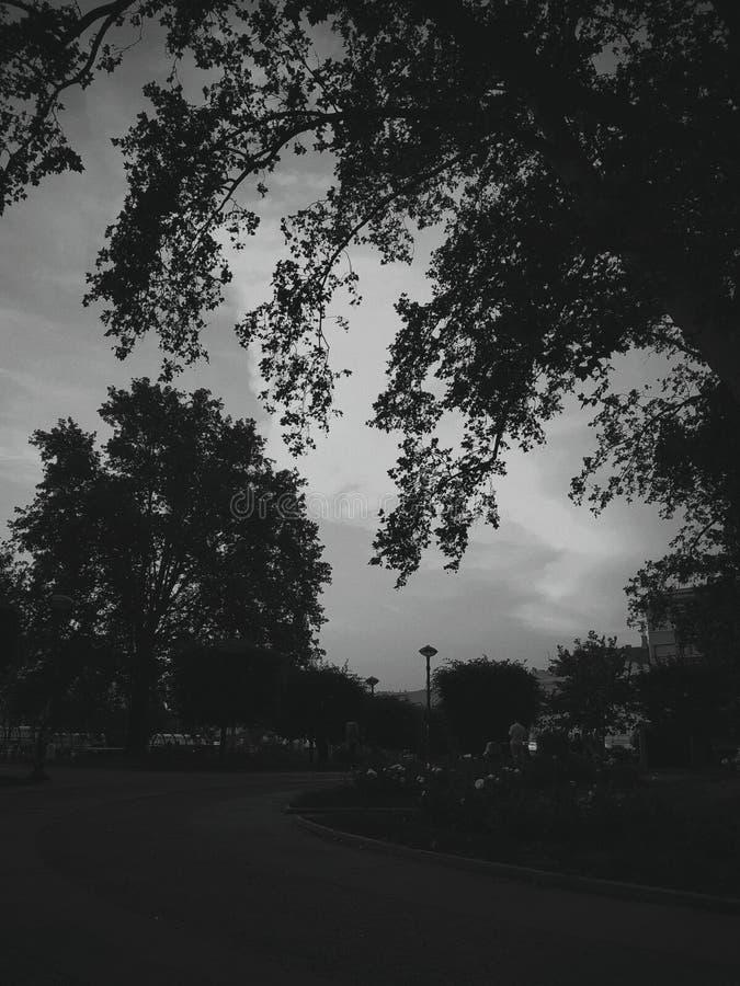 ciemna strona zdjęcie stock