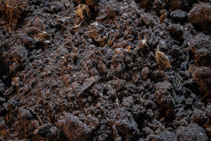 Ciemna tekstura czarna brud ziemia Odg?rny widok czarna ziemska powierzchnia, rolnictwa t?o zdjęcie royalty free