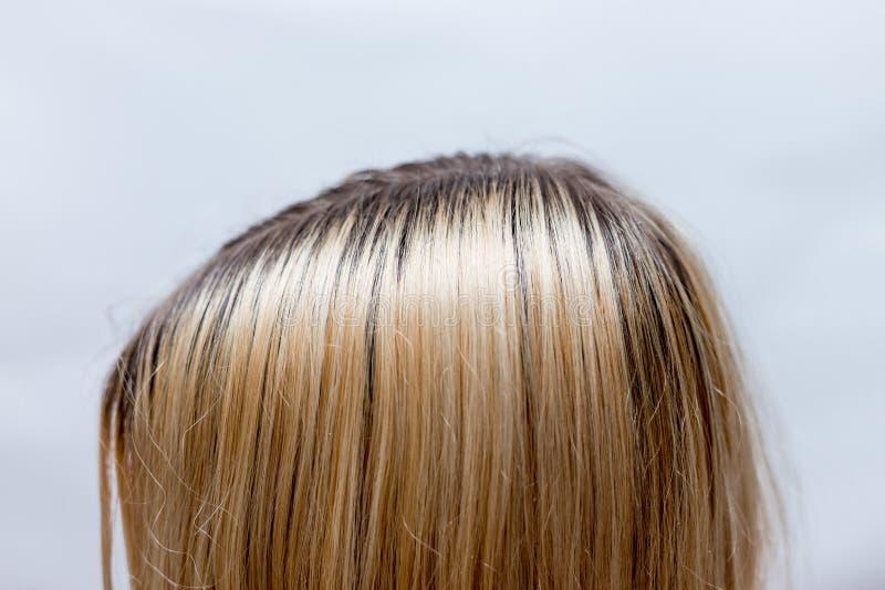 Ciemnego włosy korzenie r znowu po blondynki konania zdjęcie stock