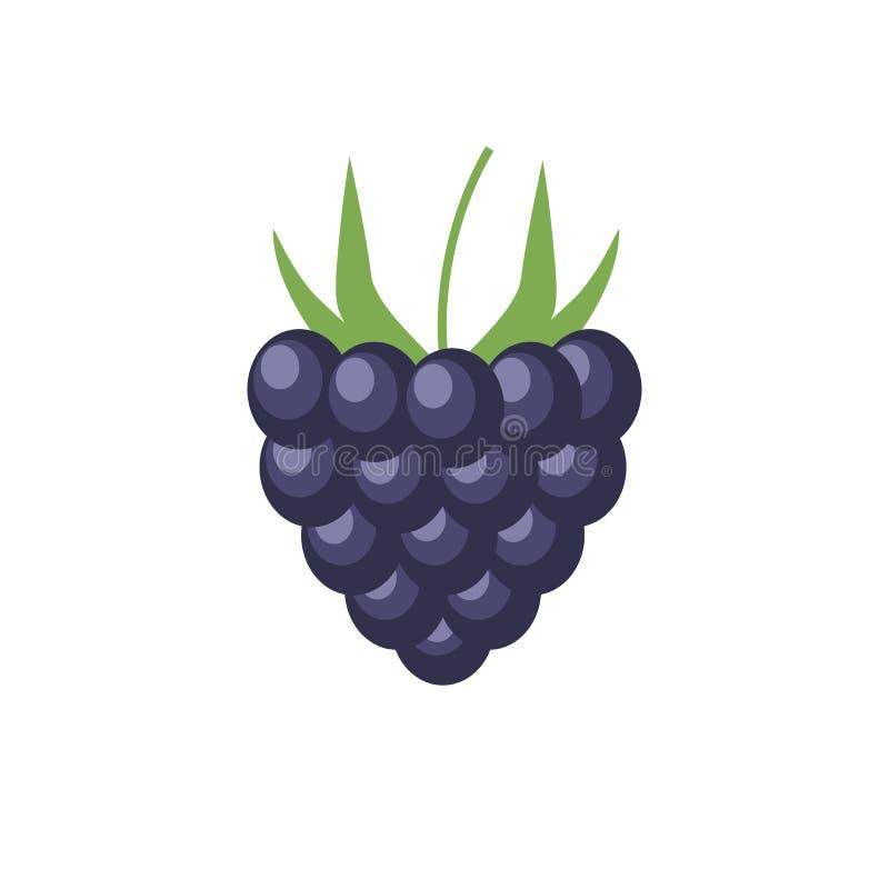 Ciemnej purpurowej jeżynowej jagodowej płaskiej ikony kolorowa wektorowa ilustracja odizolowywająca na bielu eco jedzenie EPS1 ilustracja wektor