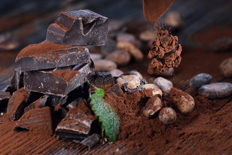 Ciemni czekoladowi kawałki, kakaowy proszek i kakaowe fasole, fotografia stock