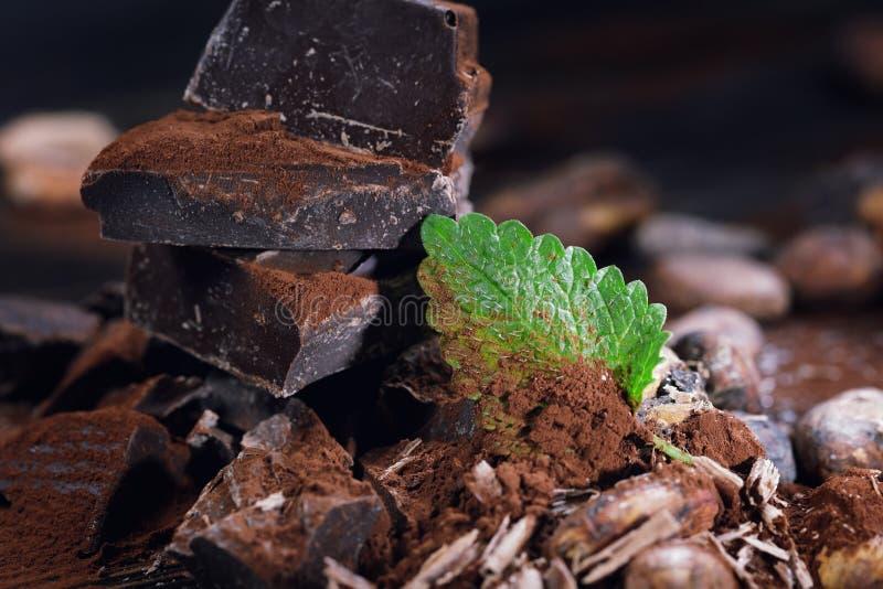 Ciemni czekoladowi kawałki, kakaowy proszek i kakaowe fasole, zdjęcia stock