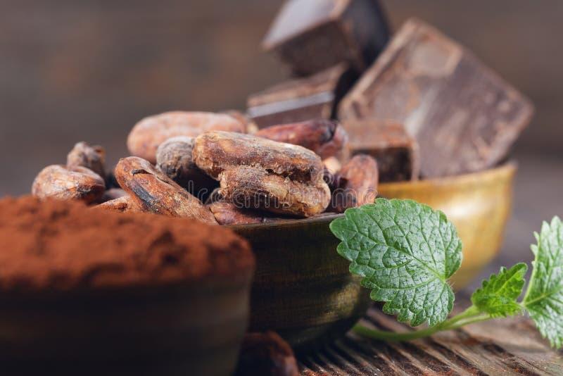 Ciemni czekoladowi kawałki, kakaowy proszek i kakaowe fasole, zdjęcie stock