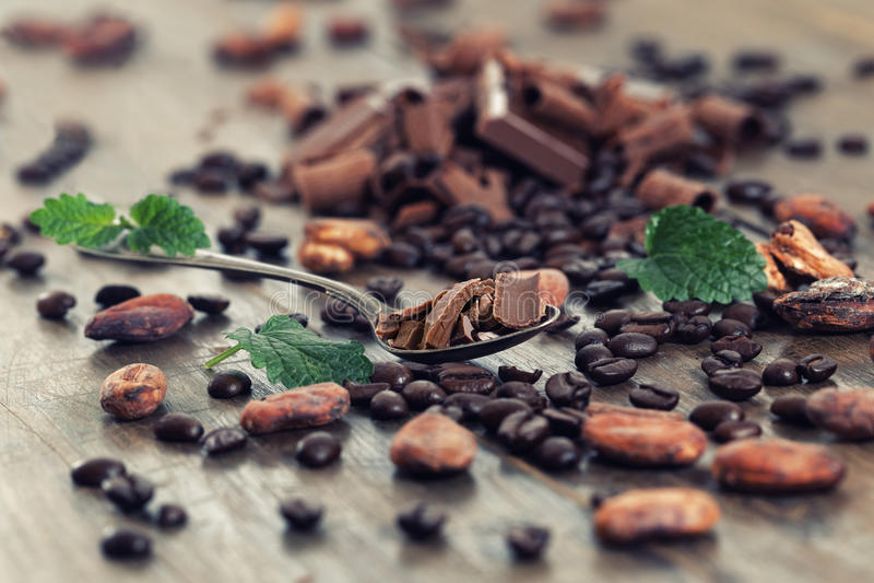 Ciemni czekoladowi kawałki, kakaowy proszek i kawowe fasole, zdjęcie royalty free
