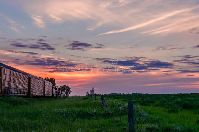 Ciemnopąsowy chmurny niebo przy zmierzchem dzień nad zieloną trawą, adra obrazy stock