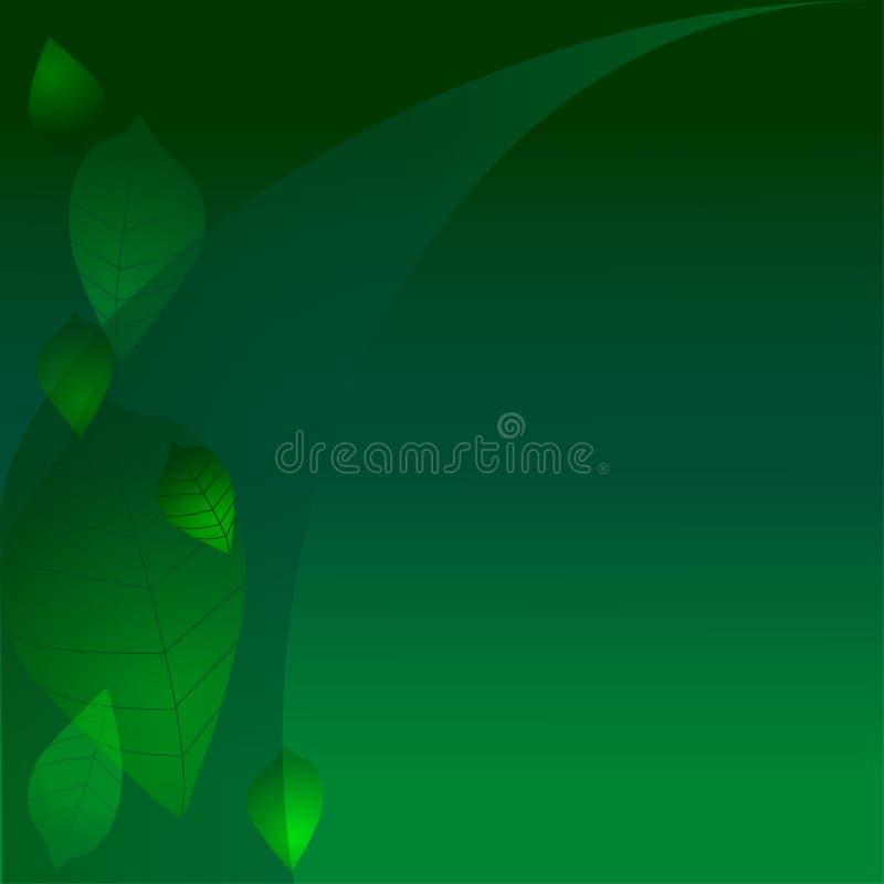 ciemnozieleni liść obrazy stock